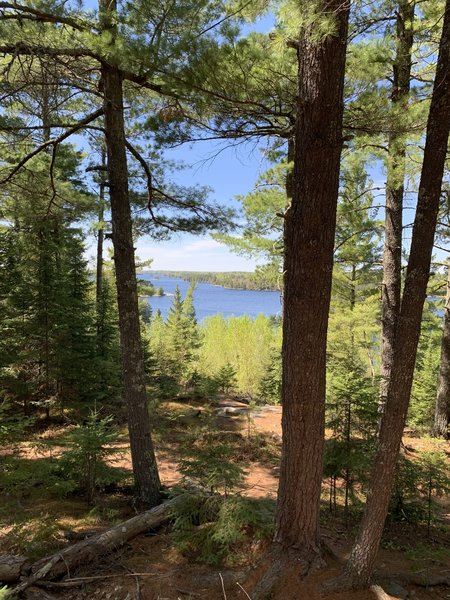 Kabetogama Lake view from trail.