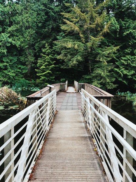 The bridge crossing Lake Swano