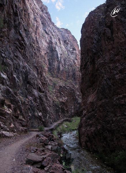 "Grand Canyon's ""The Box"" along the North Kaibab Trail."