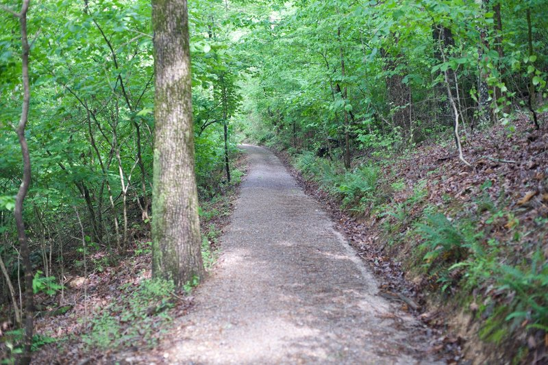 The Mountain Trail is fairly wide and made of crushed rock and dirt. The trail is shaded, which makes it nice to hike in the afternoon.