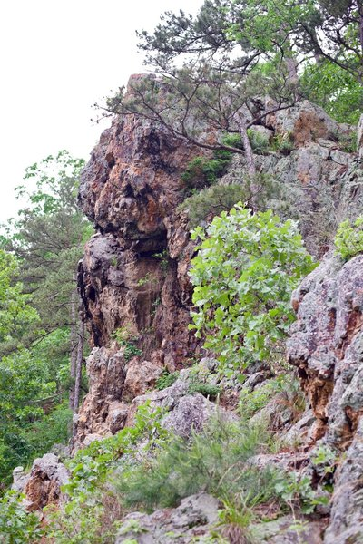 Goat Rock from the trail.