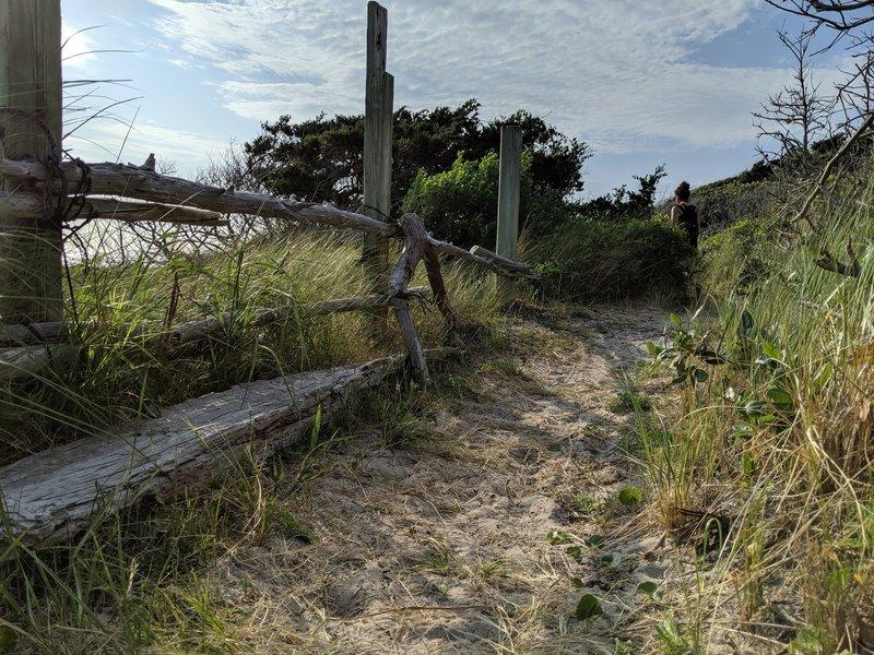 Soundside Trail.