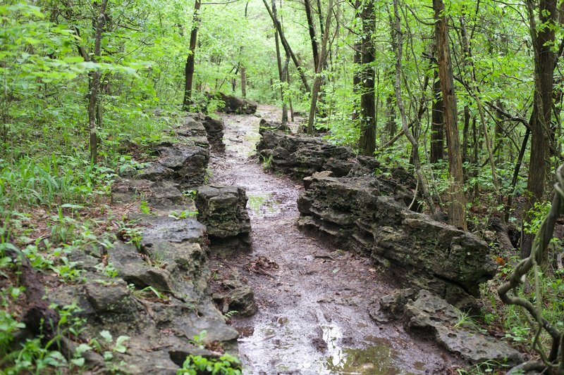 The trail works its way through his interesting rock formation.