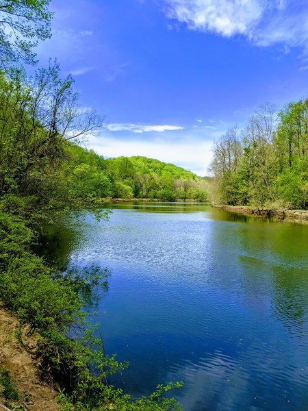 View from boat launch of Daniels Area during the spring bloom.