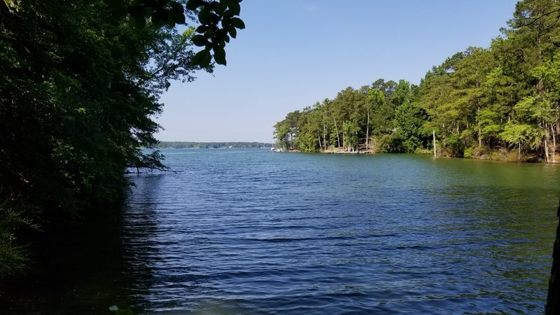 Lake Martin from Wilson Road Trailhead