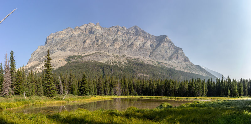 Bad Marriage Mountain and the North Fork Cut Bank Creek gently flowing through a meadow.