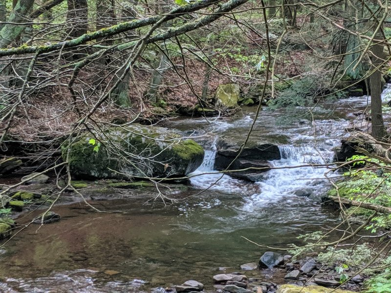 Flat rock run small cascade.