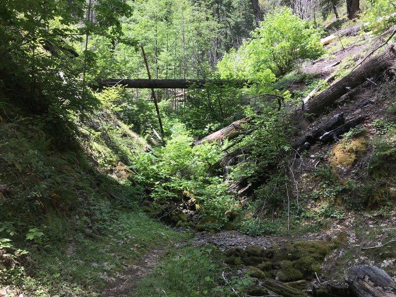 New River Trail in western Trinity Alps Wilderness