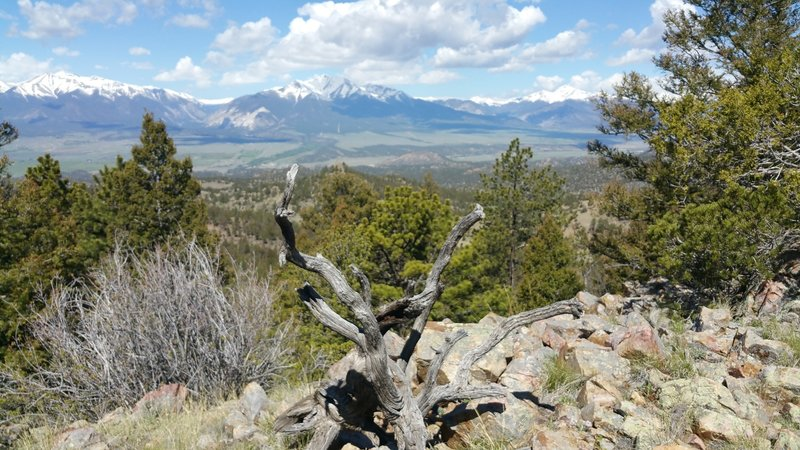 Great view of the Collegiate Peaks.