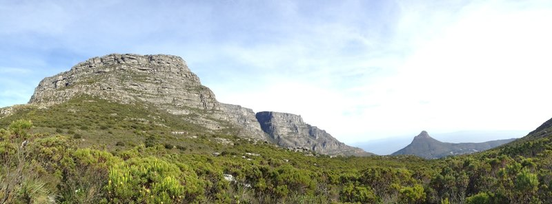 Table Mountain and Lion's Head from near the top of Newlands Ravine