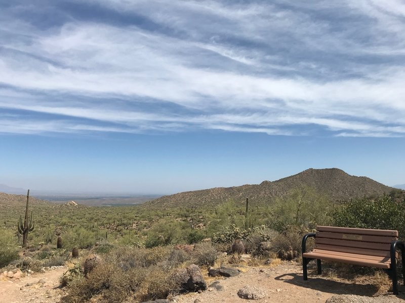 A bench at the top of the hill. Great view of Fountain Hills ... no shade, though. (Look for the BIG fountain to be going on the hour.)