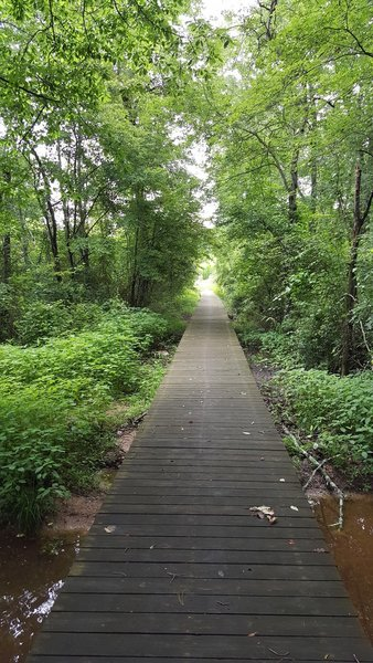 Boardwalk at Murray's Mill