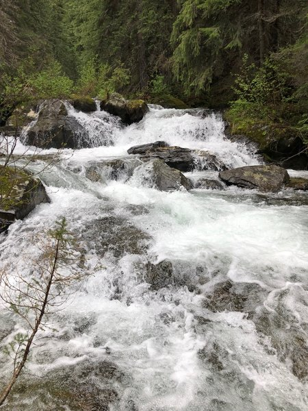 Falls on South Fork Trout Creek