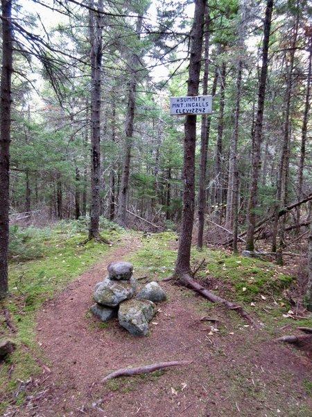 Mt. Ingalls' summit has more views than the way up.