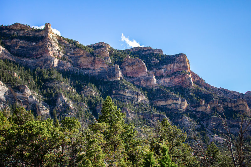 The rim of Shell Canyon looking southwest. This trail features some of the most diverse terrain Wyoming has to offer, with high alpine forests, mid-mountain ponderosa forests, steep canyon walls, and low desert landscapes.