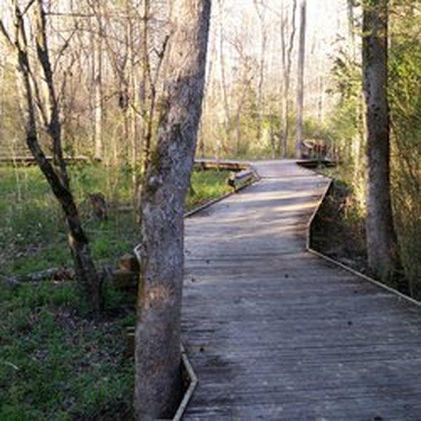 Boardwalk at Wetland Trail - River Park.