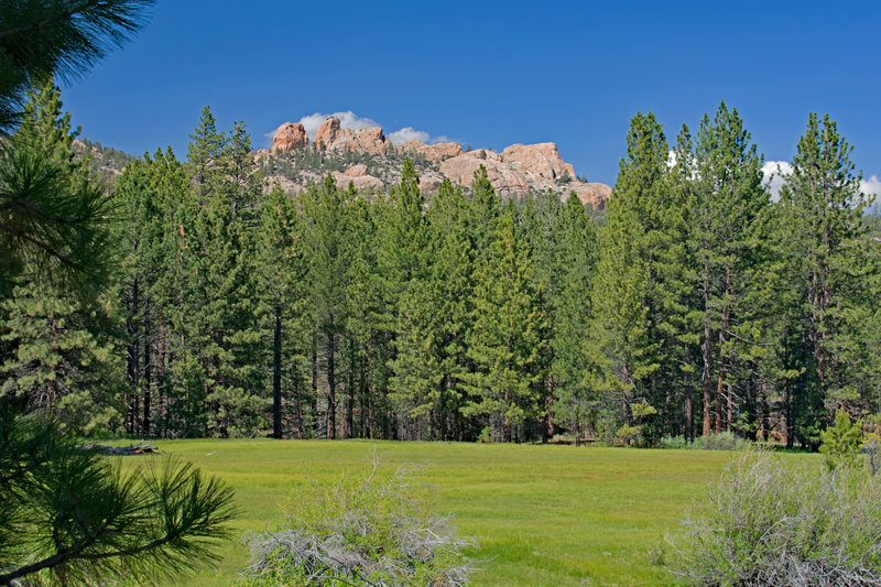Taylor Meadow and Church Rock from south side of meadow.