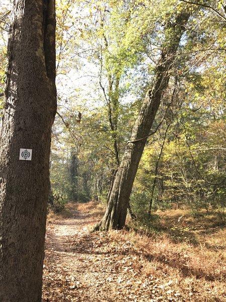 Carolina Thread Trail assurance marker along South Fork Trail
