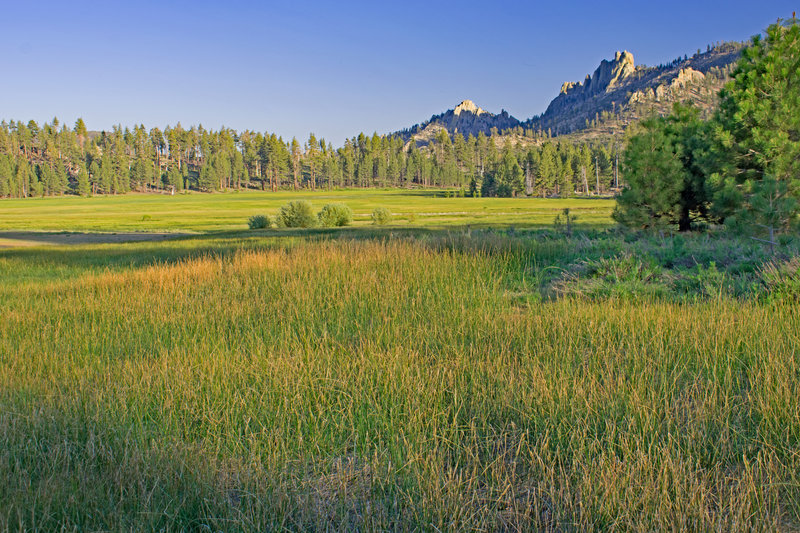 Manter Meadow in the late afternoon. On the right side, there is a sideways view of the Church Dome ridge. You have to leave the trail and hike closer to the meadows for this view.