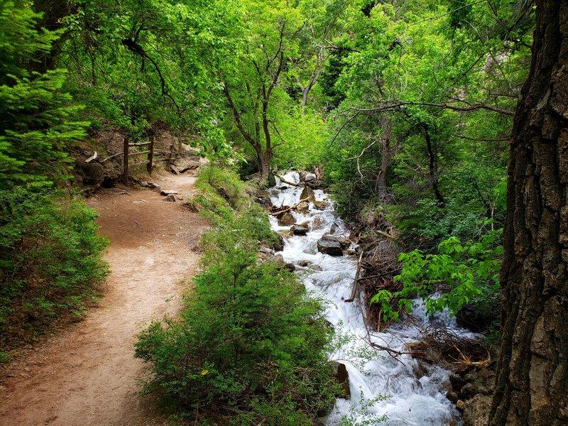 Hanging Lake Trail follows Dead Horse Creek.