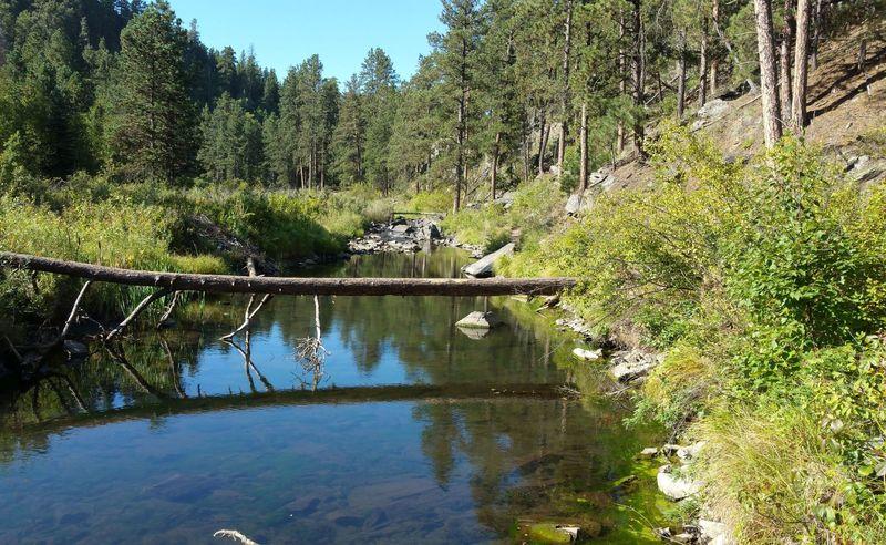 Spring Creek in September, looking southwest.
