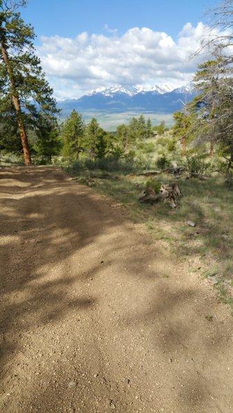 Trail #1434, view of the Collegiate Peaks/Sawatch Range.