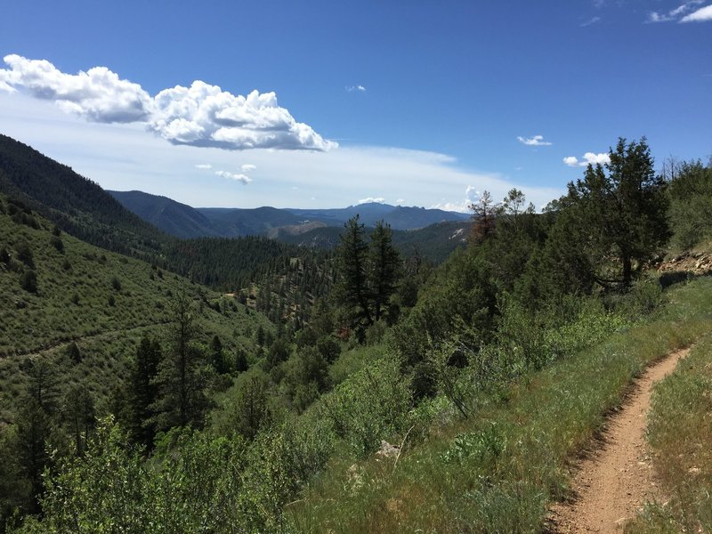 Taken looking south / downstream from mile 4.25 as described by the TRP description. The trail on the left heads downstream towards the southern trailhead / old South Platte Hotel. The trail on the right continues to gain elevation as it heads northbound.