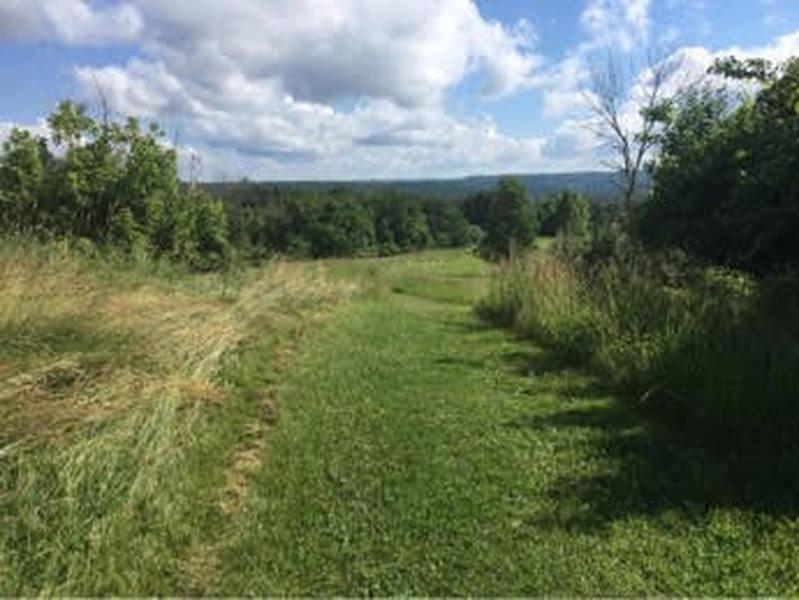 Trail leading down from Radar Hill.
