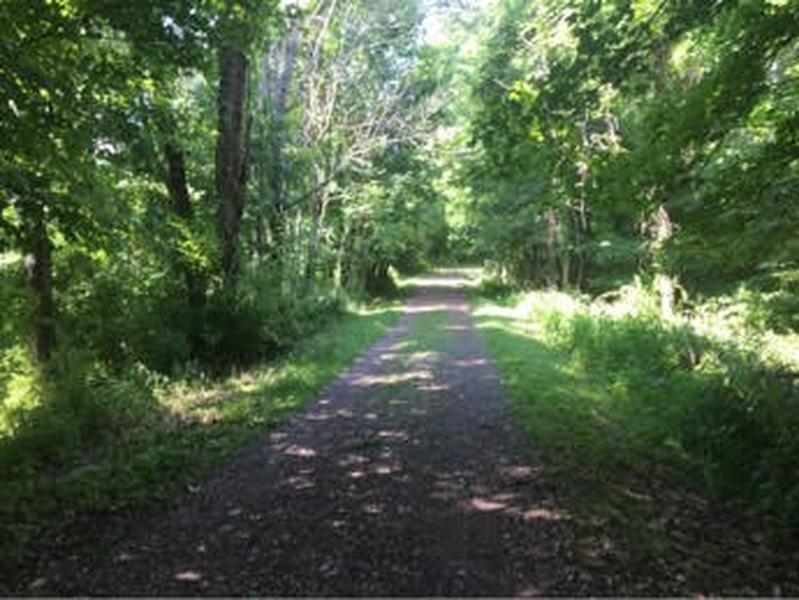 Second half of the Ridges Trail.