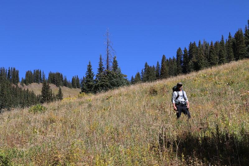 Trekking down from Peter Estin Hut.
