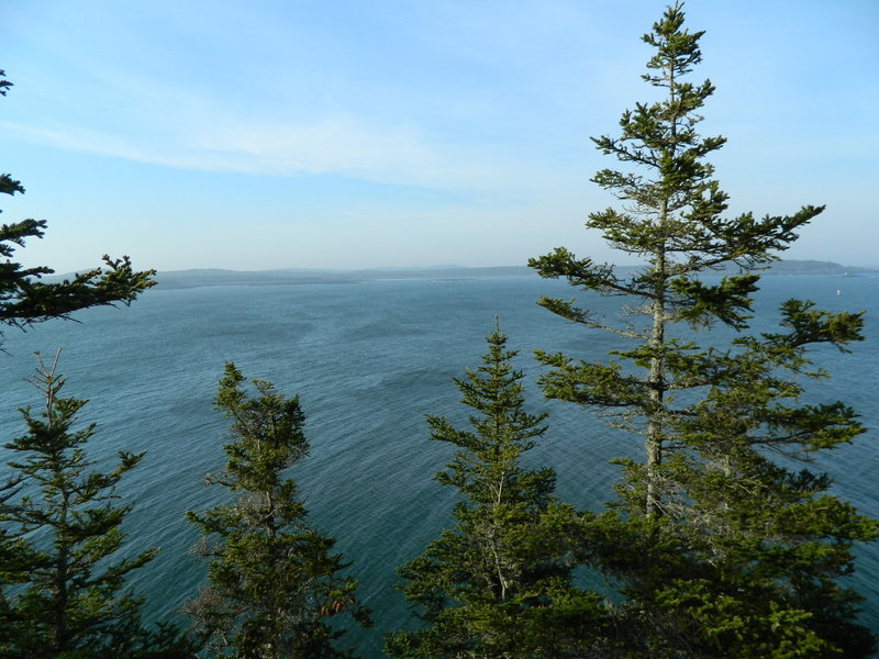 Coast Guard Trail, West Quoddy Head, overlooking Quoddy Narrows towards Campobello.