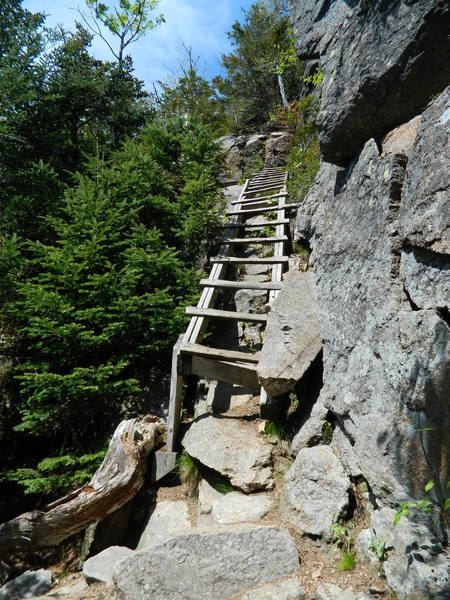 Ladder on the Hi-Cannon Trail.
