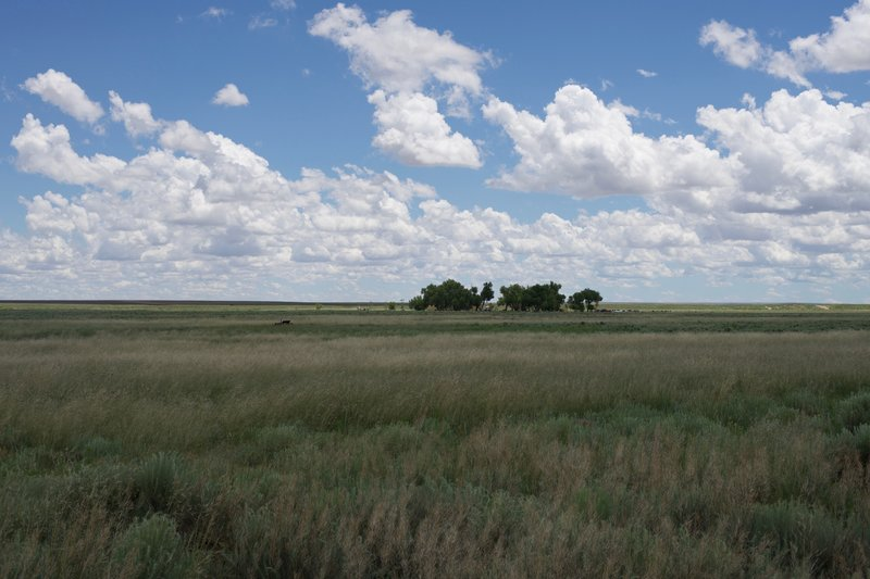 Looking back at the visitor center that sits in a copse of trees in the middle of the high plains.