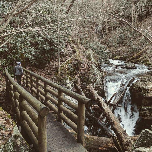 A bridge lies over Stony Creek on the Cascades Trail.
