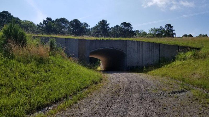 Tunnel ahead.
