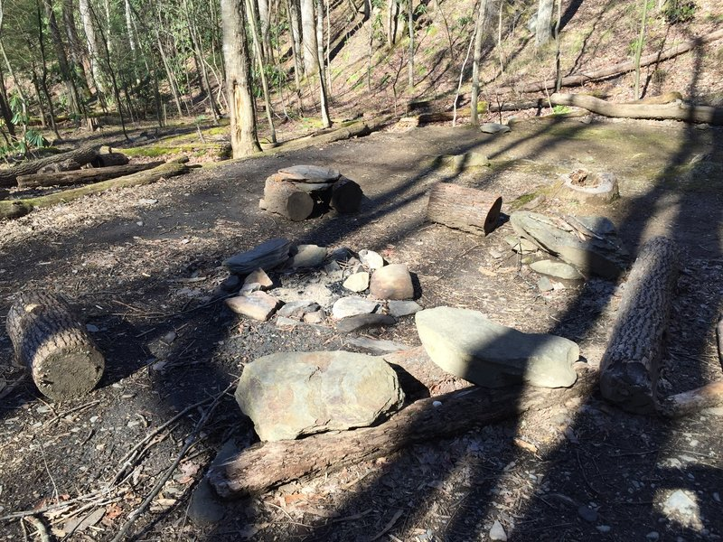 Campground 35 on Lower Mt. Cammerer Trail
