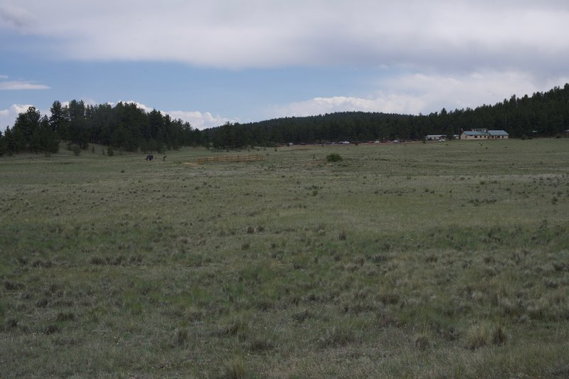 Looking back toward the visitor center, you can see corrals that protect the petrified redwood stumps.