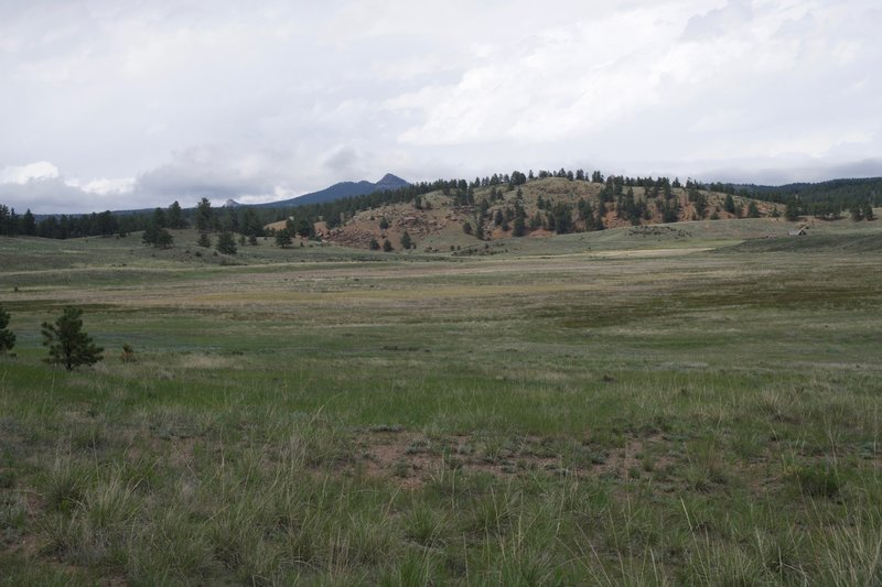 You can see the Hornbek homestead from the trail. The Hornbek Wildlife Loop trail is a 2.8-mile trail that will lead you out there.