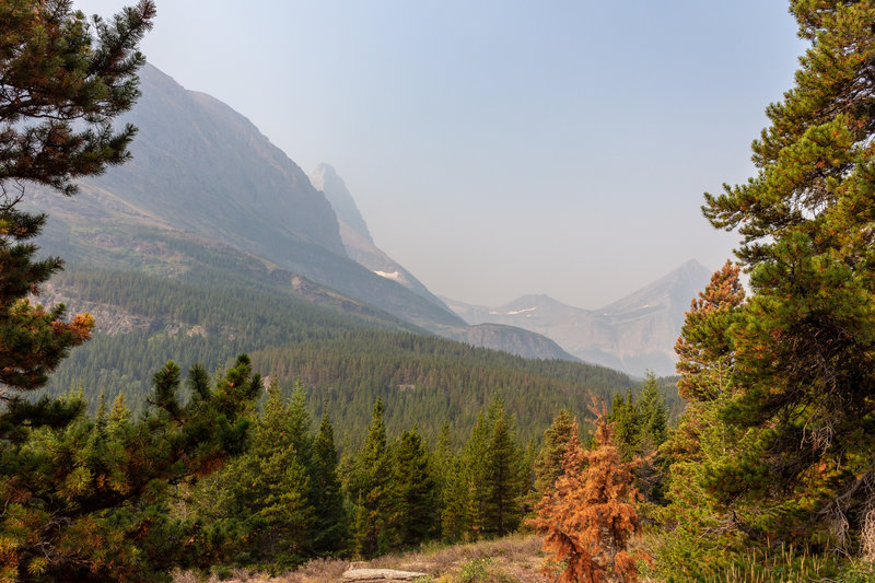 Getting a first glimpse at Mount Grinnell on Swiftcurrent Pass Trail.