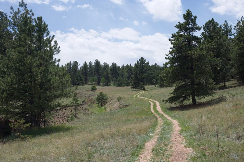 The gravel trail follows an old farm road that approaches a creek bed as it moves deeper into the monument.