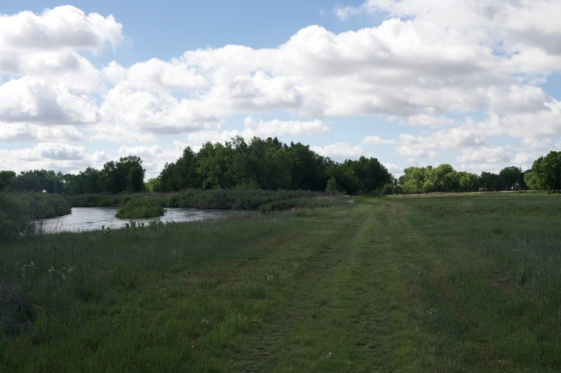 The trail is essentially a mowed path along the river as it heads toward the bottom lands where trees grow in abundance.