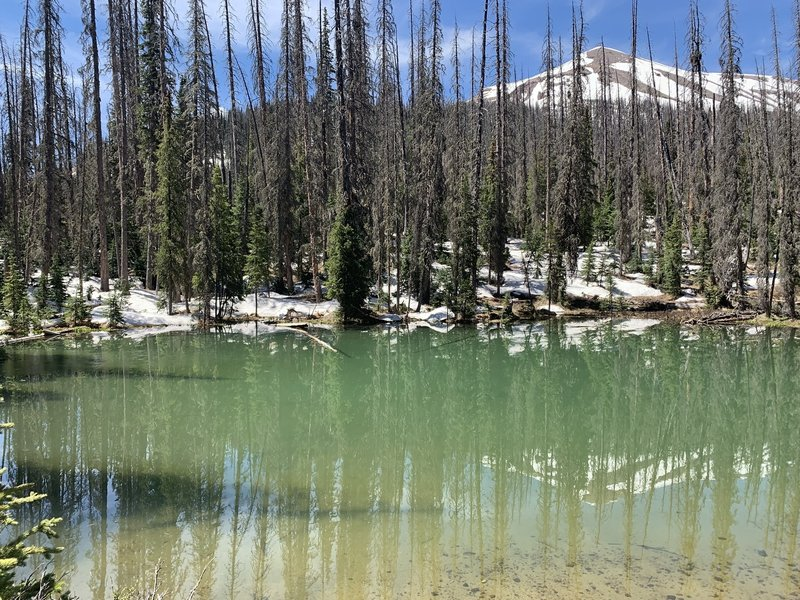 Small pond on the way to Rio Grande pyramid.