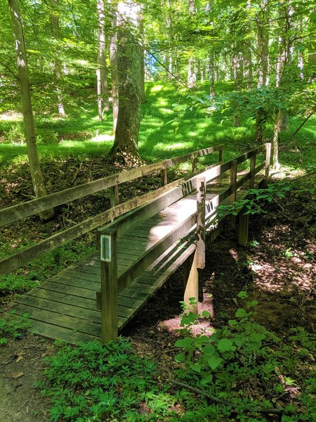Short bridge over a dry stream bed along the Medicine Tree Trail.