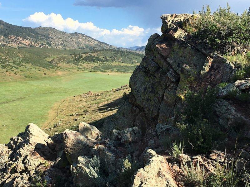 Top of Coyote Ridge facing north.