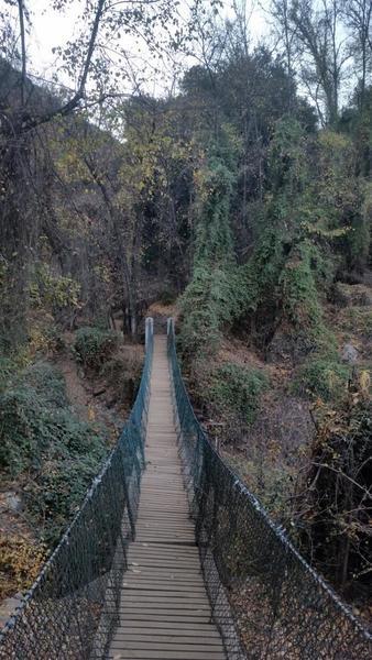 The Los Peumos bridge