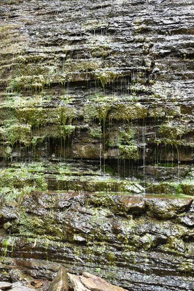 Weeping rock at Abrams Falls