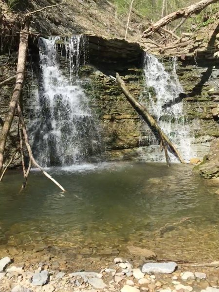 Secluded, private waterfall and pool. Follow the bottom of Hoffman Branch upstream (not an official trail) and you'll be greatly rewarded with numerous waterfalls and interesting boulders.