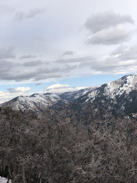 Looking East into Millcreek Canyon. If you see that tall balding spot in the back, you are looking at Murdock Peak. That's right! Murdock Peak of PCMR!