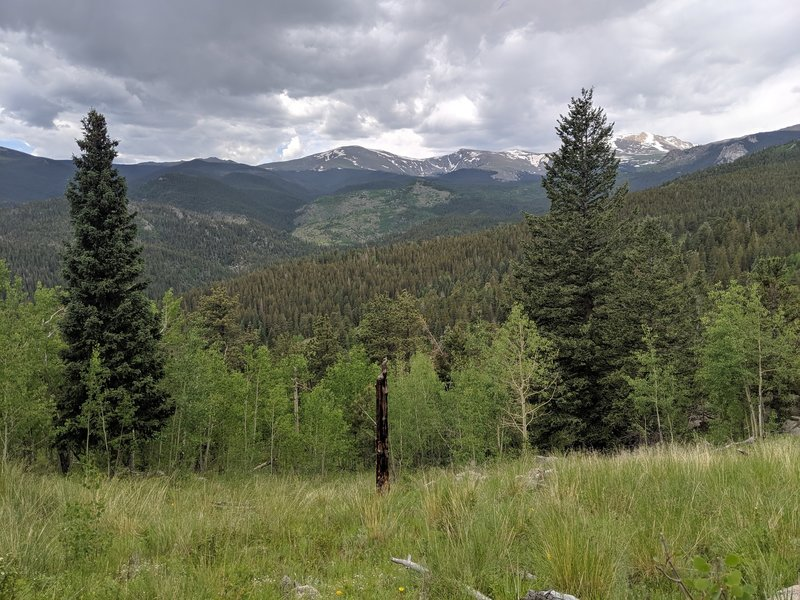 View from one of the many meadows on Captain Mountain Trail