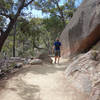 Hiker on the Wineglass Bay Lookout track